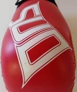 Taekwondo rokavice