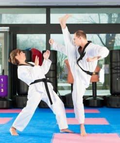 Kickboks in taekwondo